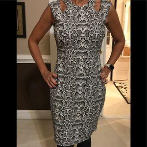 Cache dress size 2